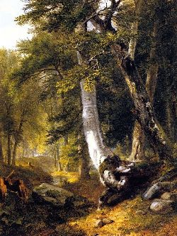 Asher Durand In The Woods