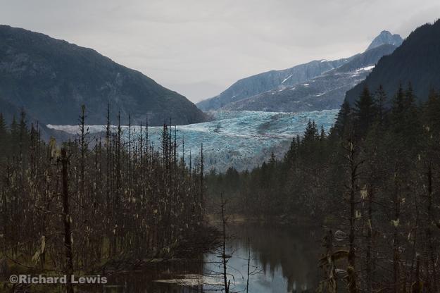 Alaska Swamp by Richard Lewis 2014