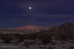 Lunar Glow in the Desert by Richard Lewis