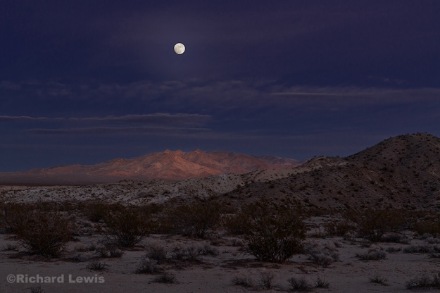 Lunar Glow in the Desert by Richard Lewis