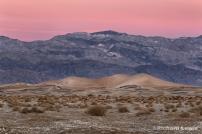 Morning Dunes by Richard Lewis