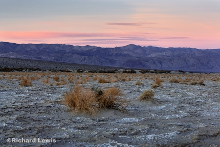 The Peace of a Desert Sky by Richard Lewis