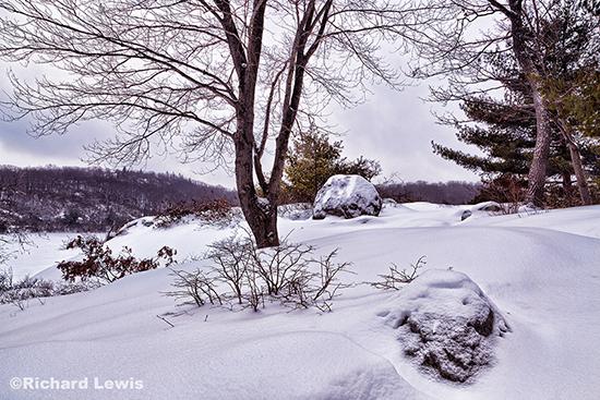 Near Pine Meadow Lake in Harriman State Park