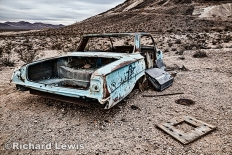 Left in the Desert by Richard Lewis