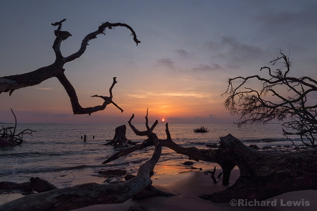 Sunrise on Big Talbot Island by Richard Lewis