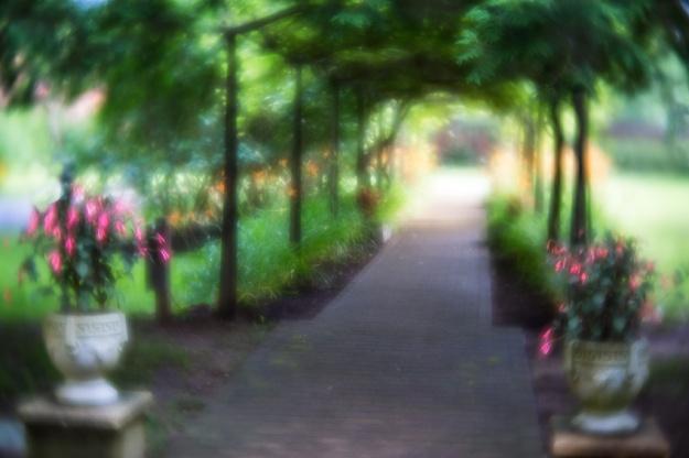 Smithville Garden by Richard Lewis