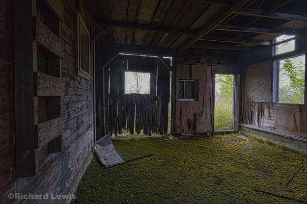 Back Of The Old Cabin by Richard Lewis