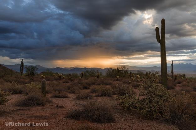 Rainy Sunrise in Arizona by Richard Lewis McDowell Mountain Park