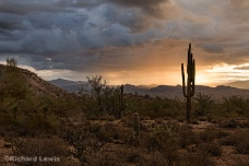 Rainy Sunrise in Arizona by Richard Lewis McDowell Mountain Park