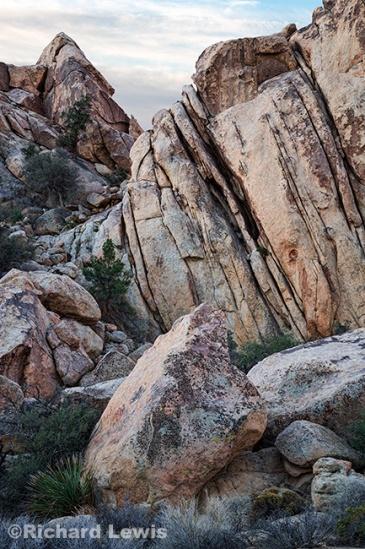 Joshua Tree Rock Formation 1 by Richard Lewis