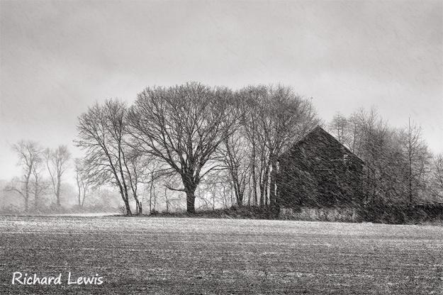 Winter Textures in Burlington New Jersey by Richard Lewis