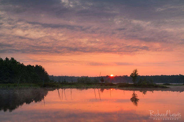 Sunrise In The Franklin Parker Preserve by Richard Lewis