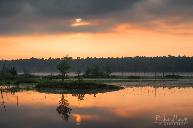 Storm Front After Dawn in the Pine Barrens by Richard Lewis