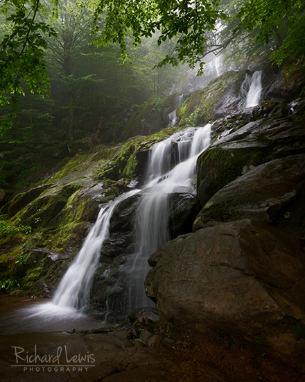 Dark Hollow Falls Shenandoah National Park by Richard Lewis