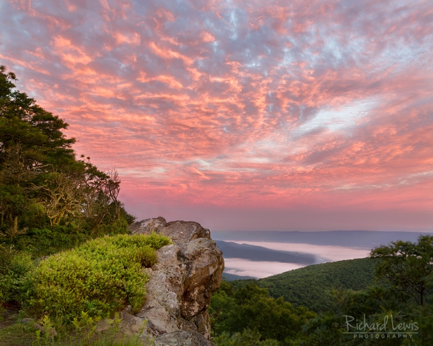 Dawn in Shenandoah National Park by Richard Lewis