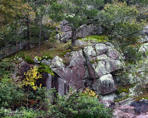 A Touch Of Fall In The Ozark Mountains by Richard Lewis
