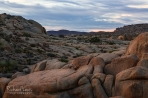 Morning on the Rocks In Joshua Tree National Park by Richard Lewis
