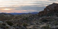 Rocky Landscape Panorama in Joshua Tree National Park